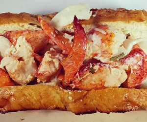 cold lobster roll with citrus fennel slaw