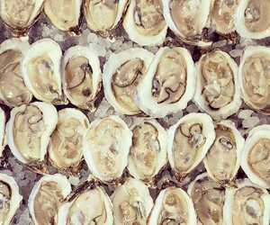 how old were you when you learned about sex on the bay oysters? today old?